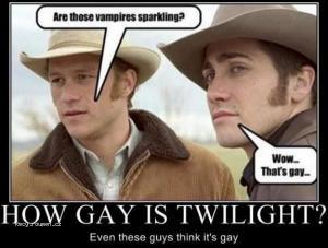 howgayistwilight