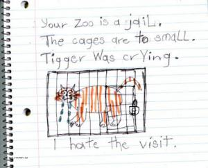 Your Zoo