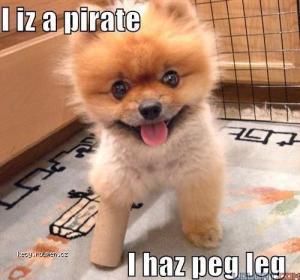 I iz a pirate