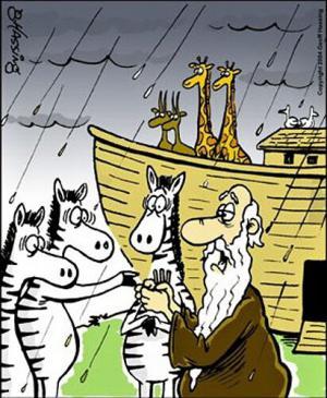 Kdo mohl jít na Noemovu Archu?
