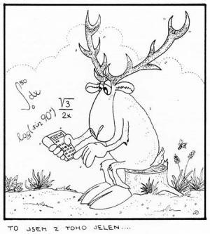 Když jelen počítá matematiku