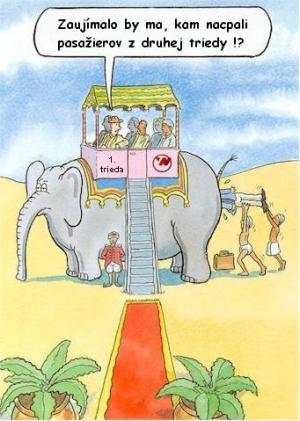 Jak vypadá 1. vs. 2. třída při jízdě na slonovi
