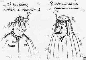 Kořen z Moravy vs. podivín