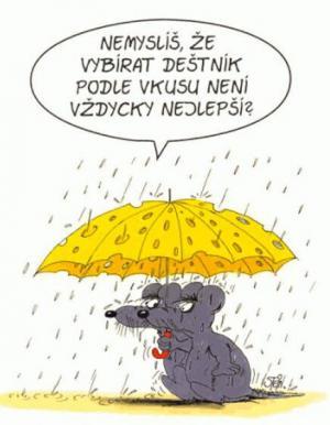 Vybírat deštník dle vkusu není dobrý nápad