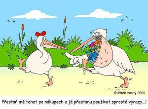 Když jdou nakupovat dva pelikáni