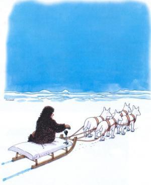 Sněžní psi poháněni pákou
