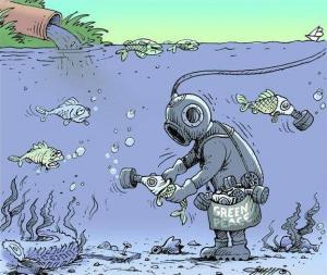 Když lidé zachraňují ryby