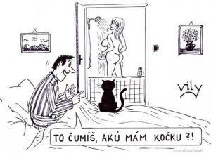 Když si povídáš s kočkou o své ženě