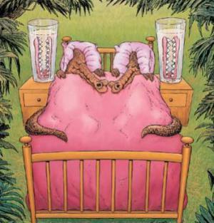 Chodí spát krokodýli s protézou?