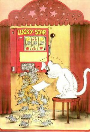 Když kočka vyhraje jackpot