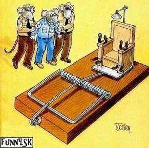 Jak vypadá poprava  myší