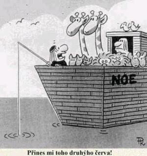 Noemova archa shání potravu