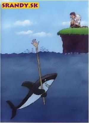 Žralok chytřejší než člověk