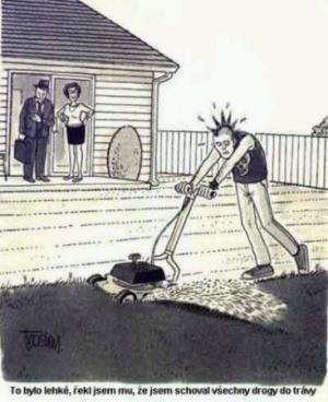 Jak donutit syna, aby šel posekat trávu