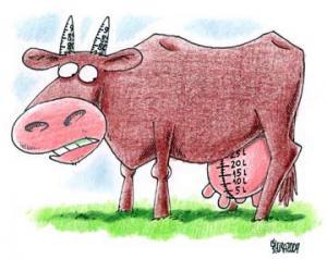 Kráva s 25 Litry mléka