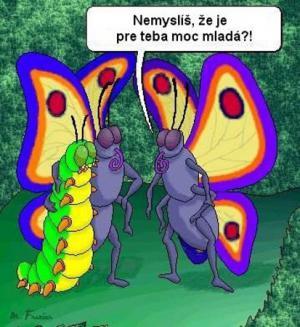 Velký věkový rozdíl mezi motýly