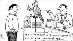 Papoušek, který ovládá znakovou řeč