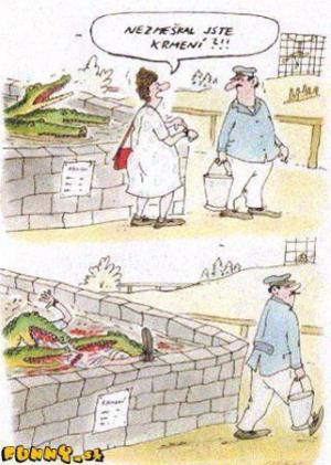 Čím nakrmíme krokodýla?
