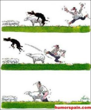 Úchyl, který má rád ovečky