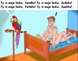 Papoušek umí občas zkazit vztahy
