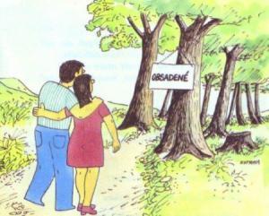 Když si chceš s manželkou užít v lese