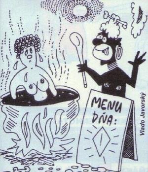 Když si uvaříš k obědu ženu