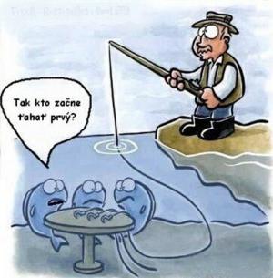 Když si ryby losují, kdo chytne návnadu první