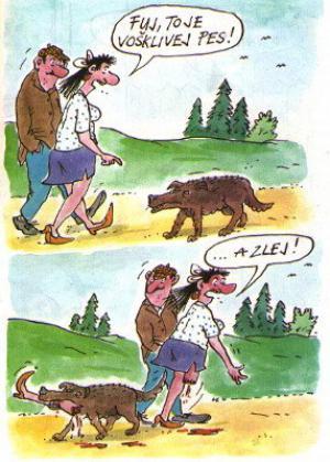 Když potkáš v lese ošklivého psa