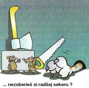 Dvě myšky nahání kočka
