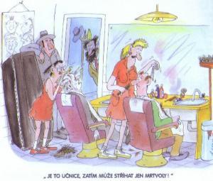 Jak se zaučuje kadeřnice