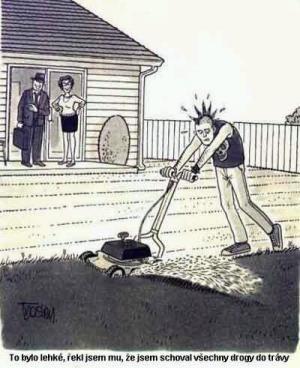 Jak donutit syna, aby posekal trávu?