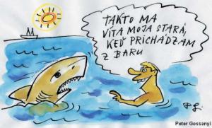Když muž natrefí na žraloka