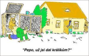Pepa šel zkontrolovat králíky