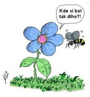 Když má květina jediného přítele