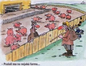 Poslali mě na nějakou farmu