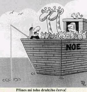 Noemova archa a chytání ryb