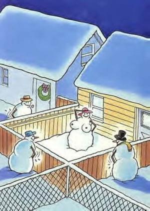 Stavění sněhuláků na vesnici
