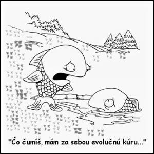 Evoluční kúra pro ryby