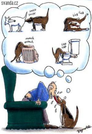 Když tě olízne tvůj pes