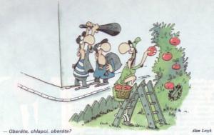 Natrhám si jen pár jablek a jdu