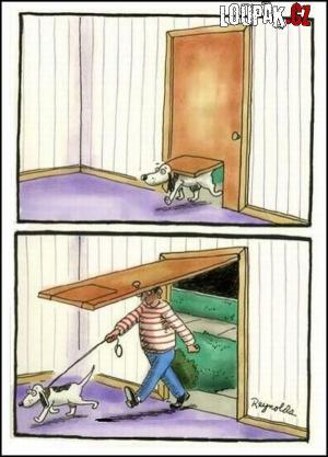 Když může mít psík vyklápěcí dveře, tak i já