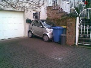 Jak zaparkovat svého miláčka?