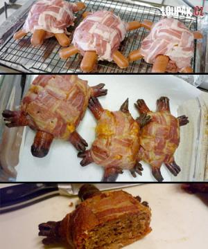 Jak vypadá želva z jídla?