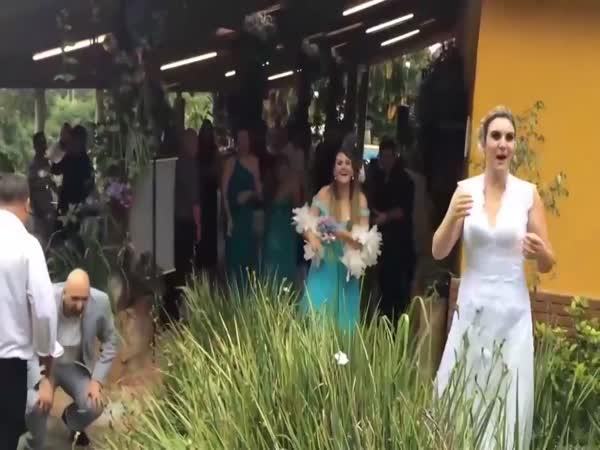 Vtípek - Svatební kytice