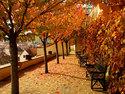 Podzim - obrázky z celého světa