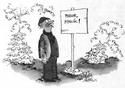 OBRÁZKY -  Kreslené vtipy
