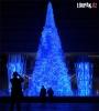 OBRÁZKY - Originální Vánoční stromky