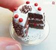 OBRÁZKY - Miniaturní jídlo
