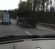 Nečekané překvapení na silnici