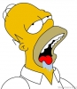 Simpsonovi - Homer Jay Simpson portrét idiota